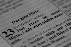bible-826560_1280